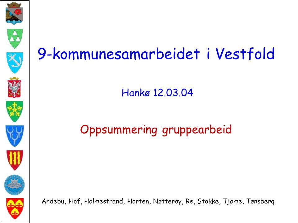 9-kommunesamarbeidet i Vestfold Hankø 12.03.04 Oppsummering gruppearbeid Andebu, Hof, Holmestrand, Horten, Nøtterøy, Re, Stokke, Tjøme, Tønsberg