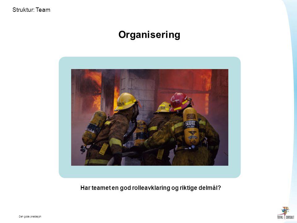 Den gode prestasjon Struktur: Team Organisering Har teamet en god rolleavklaring og riktige delmål?