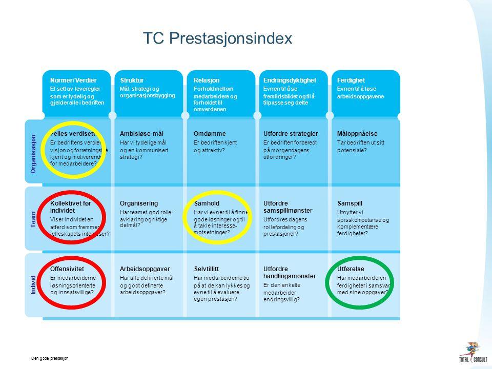 Den gode prestasjon TC Prestasjonsindex Normer/ Verdier Et sett av leveregler som er tydelig og gjelder alle i bedriften Struktur Mål, strategi og organisasjonsbygging Relasjon Forhold mellom medarbeidere og forholdet til omverdenen Endringsdyktighet Evnen til å se fremtidsbildet og til å tilpasse seg dette Ferdighet Evnen til å løse arbeidsoppgavene Felles verdisett Er bedriftens verdier, visjon og forretningsidé kjent og motiverende for medarbeidere.