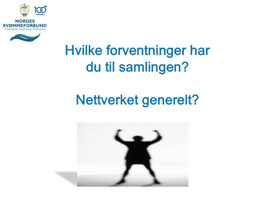 Sponsorarbeid 1)mot klubben som aktør i lokalmiljøet (Lambertseter+Bærum) 2)mot klubbens aktivitets (BSC+OI?) 3)Arrangement (xx?) 4)Sponsorsvømming (Delfana).