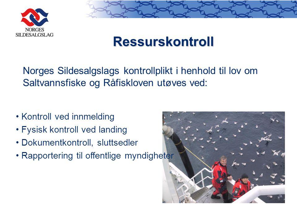 Ressurskontroll Kontroll ved innmelding Fysisk kontroll ved landing Dokumentkontroll, sluttsedler Rapportering til offentlige myndigheter Norges Silde
