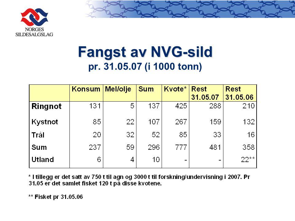 Fangst av NVG-sild Fangst av NVG-sild pr. 31.05.07 (i 1000 tonn)