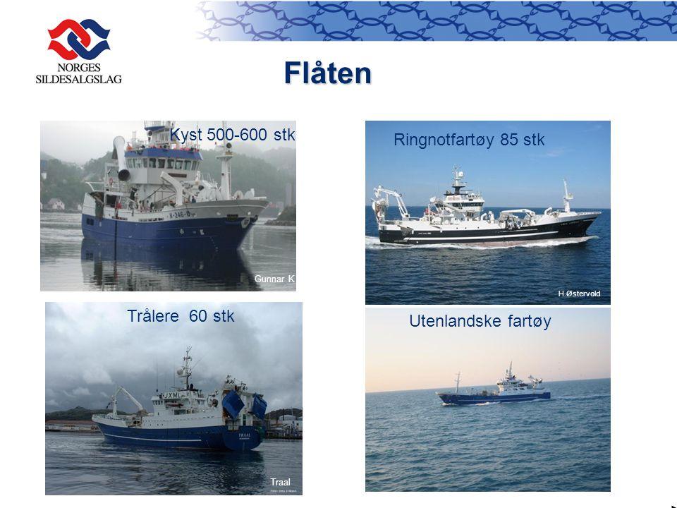 Flåten Flåten Kyst 500-600 stk Trålere 60 stk Utenlandske fartøy H.Østervold Traal Gunnar K Ringnotfartøy 85 stk