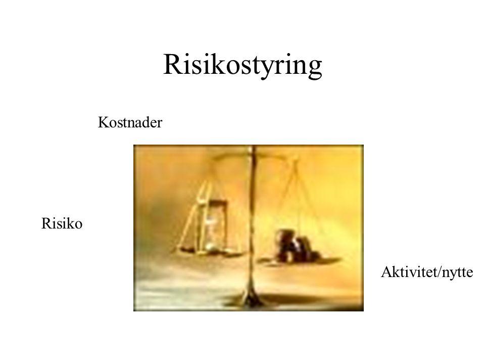 Risikostyring Risiko Aktivitet/nytte Kostnader