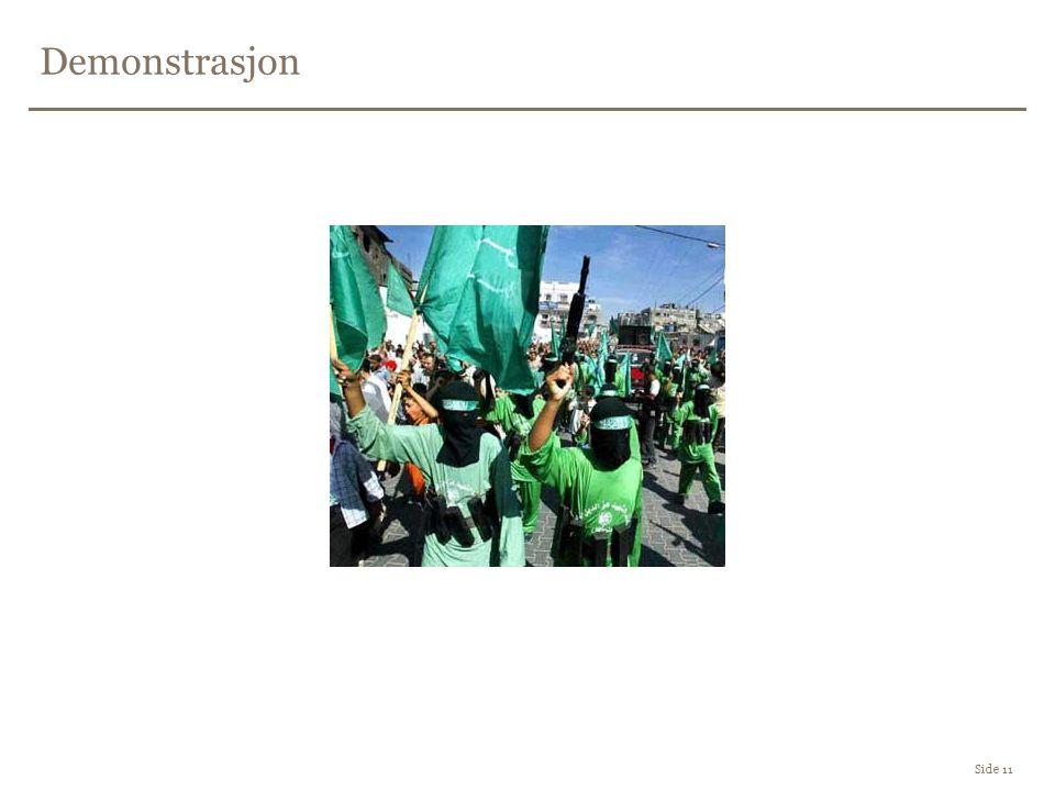 Demonstrasjon Side 11
