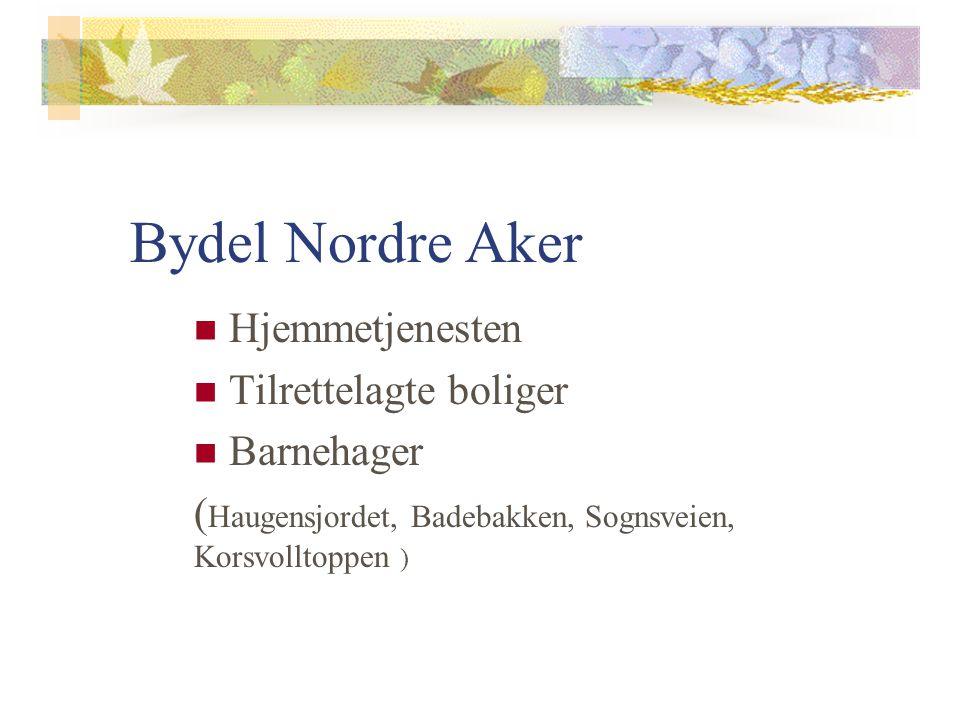 Bydel Nordre Aker Hjemmetjenesten Tilrettelagte boliger Barnehager ( Haugensjordet, Badebakken, Sognsveien, Korsvolltoppen )