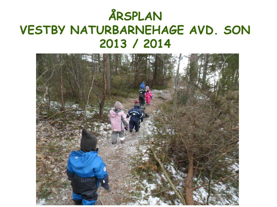 ÅRSPLAN VESTBY NATURBARNEHAGE AVD. SON 2013 / 2014