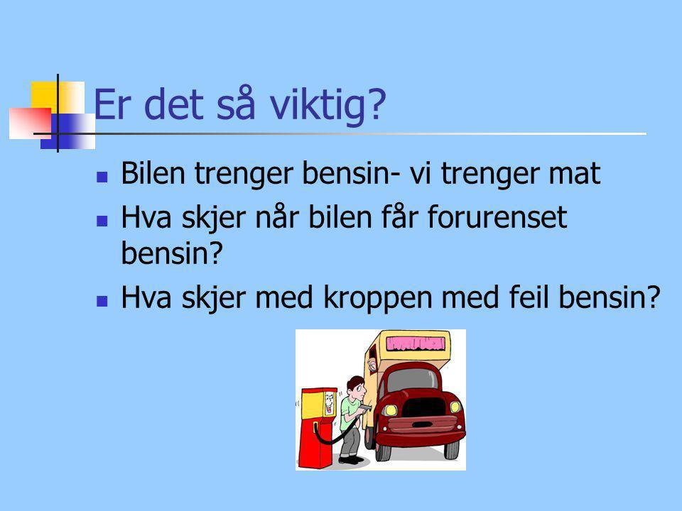 Er det så viktig? Bilen trenger bensin- vi trenger mat Hva skjer når bilen får forurenset bensin? Hva skjer med kroppen med feil bensin?