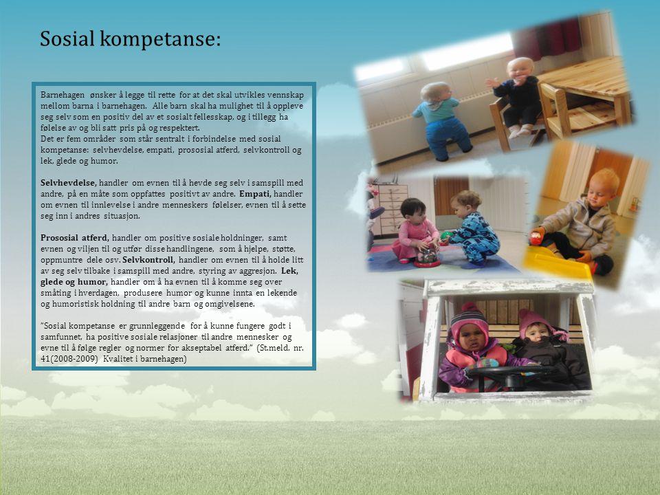 Sosial kompetanse: Barnehagen ønsker å legge til rette for at det skal utvikles vennskap mellom barna i barnehagen. Alle barn skal ha mulighet til å o