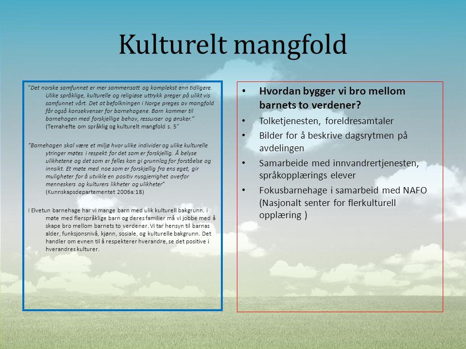 """Kulturelt mangfold """"Det norske samfunnet er mer sammensatt og komplekst enn tidligere. Ulike språklige, kulturelle og religiøse uttrykk preger på ulik"""