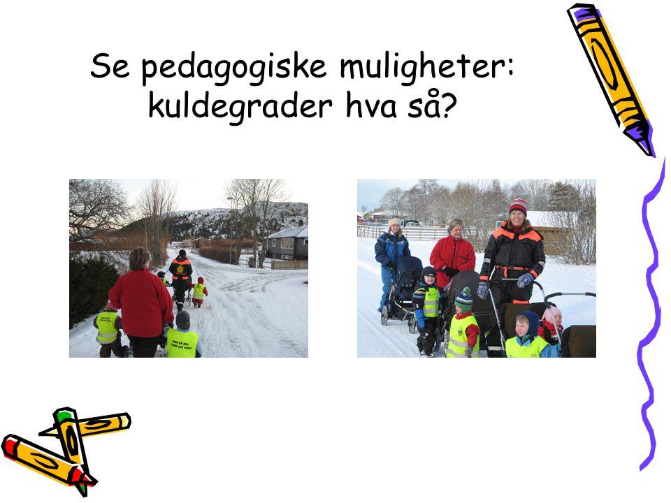 Se pedagogiske muligheter: kuldegrader hva så?