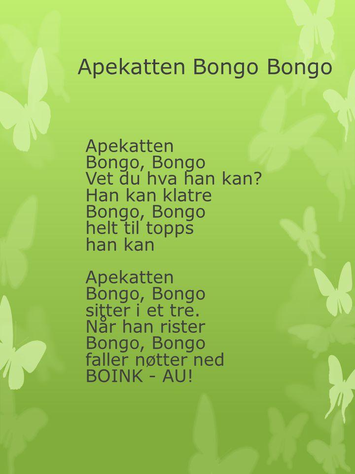 Apekatten Bongo Bongo Apekatten Bongo, Bongo Vet du hva han kan? Han kan klatre Bongo, Bongo helt til topps han kan Apekatten Bongo, Bongo sitter i et