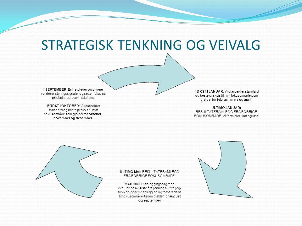 STRATEGISK TENKNING OG VEIVALG FØRST I JANUAR: Vi utarbeider standard og beste praksis til nytt fokusområde som gjelder for februar, mars og april. UL