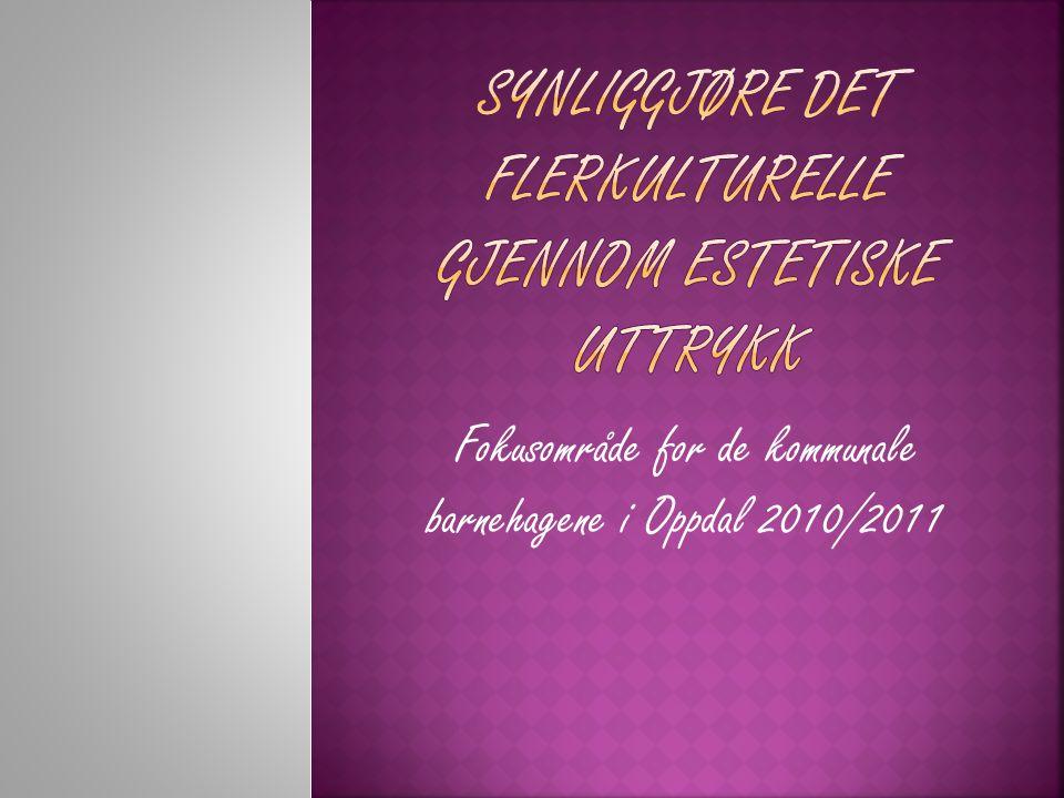 Fokusområde for de kommunale barnehagene i Oppdal 2010/2011