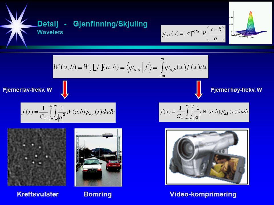 Detalj - Gjenfinning/Skjuling Wavelets KreftsvulsterBomringVideo-komprimering Fjerner lav-frekv. WFjerner høy-frekv. W