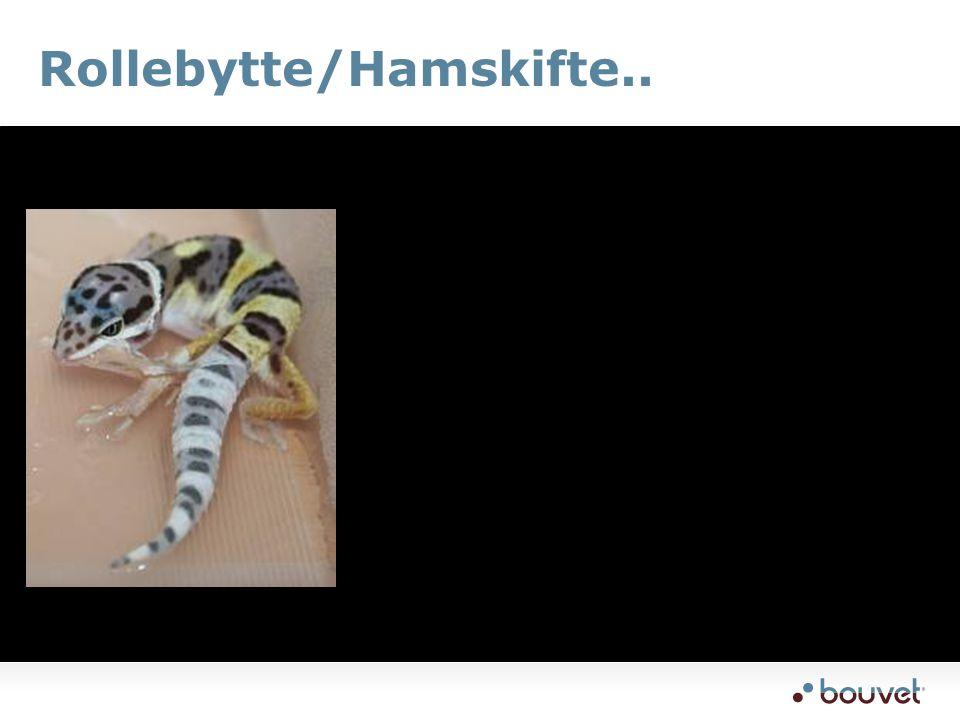 Rollebytte/Hamskifte..