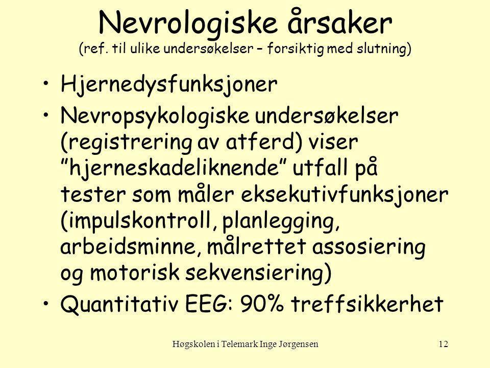 Høgskolen i Telemark Inge Jørgensen12 Nevrologiske årsaker (ref. til ulike undersøkelser – forsiktig med slutning) Hjernedysfunksjoner Nevropsykologis