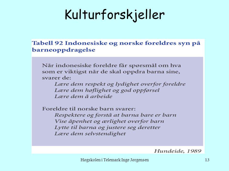 Høgskolen i Telemark Inge Jørgensen13 Kulturforskjeller