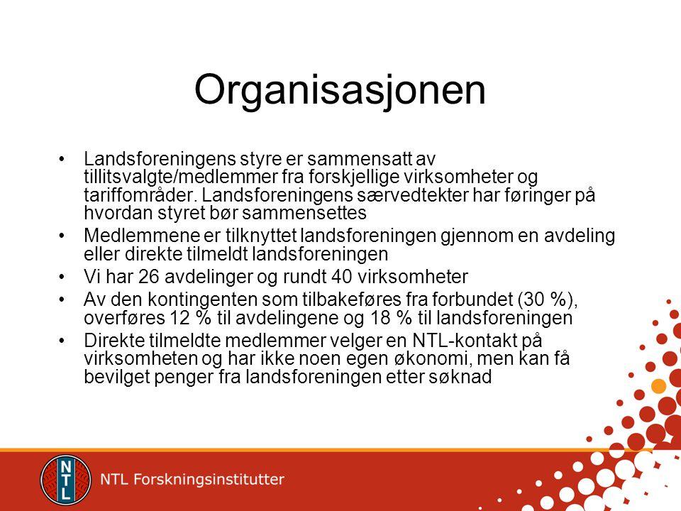 Organisasjonen Landsforeningens styre er sammensatt av tillitsvalgte/medlemmer fra forskjellige virksomheter og tariffområder. Landsforeningens særved