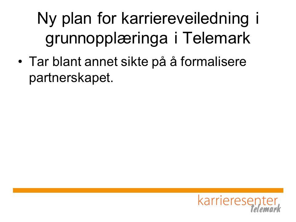 Ny plan for karriereveiledning i grunnopplæringa i Telemark Tar blant annet sikte på å formalisere partnerskapet.