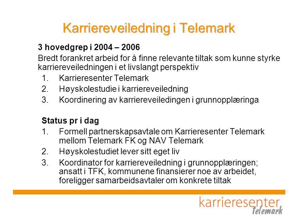 Nettverksarbeid i Telemark