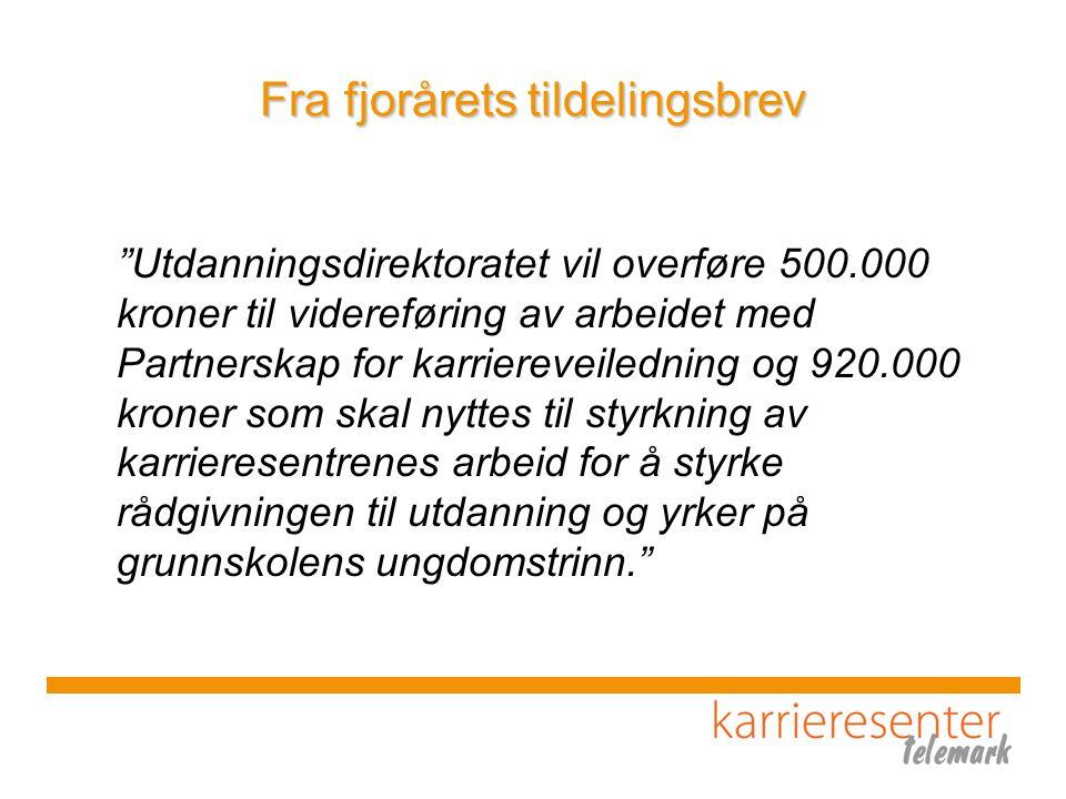 Hovedmål og målgrupper 1.Voksne i Telemark over 18 år –Tilby oversiktelig og tilpasset informasjon via vår nettside.