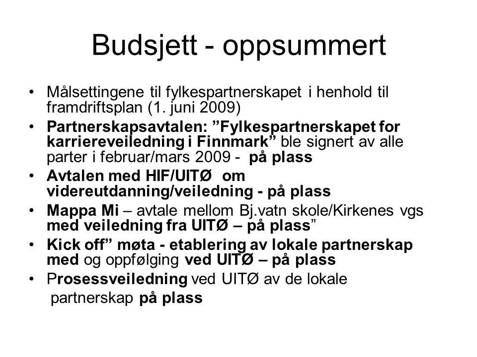 Budsjett - oppsummert Målsettingene til fylkespartnerskapet i henhold til framdriftsplan (1.