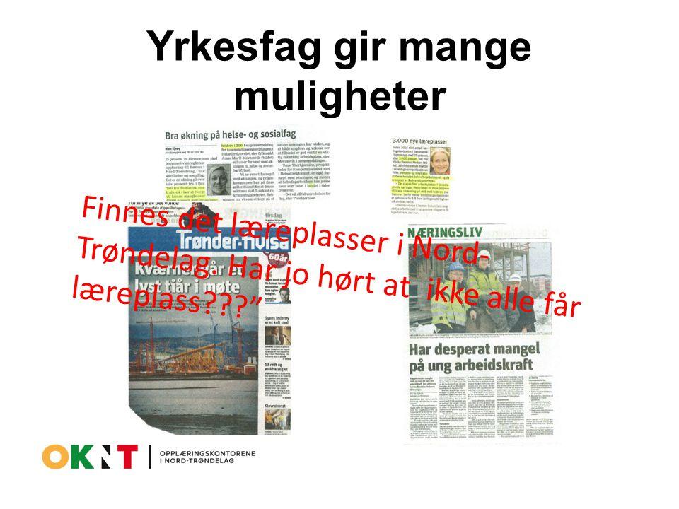 Yrkesfag gir mange muligheter Finnes det læreplasser i Nord- Trøndelag.