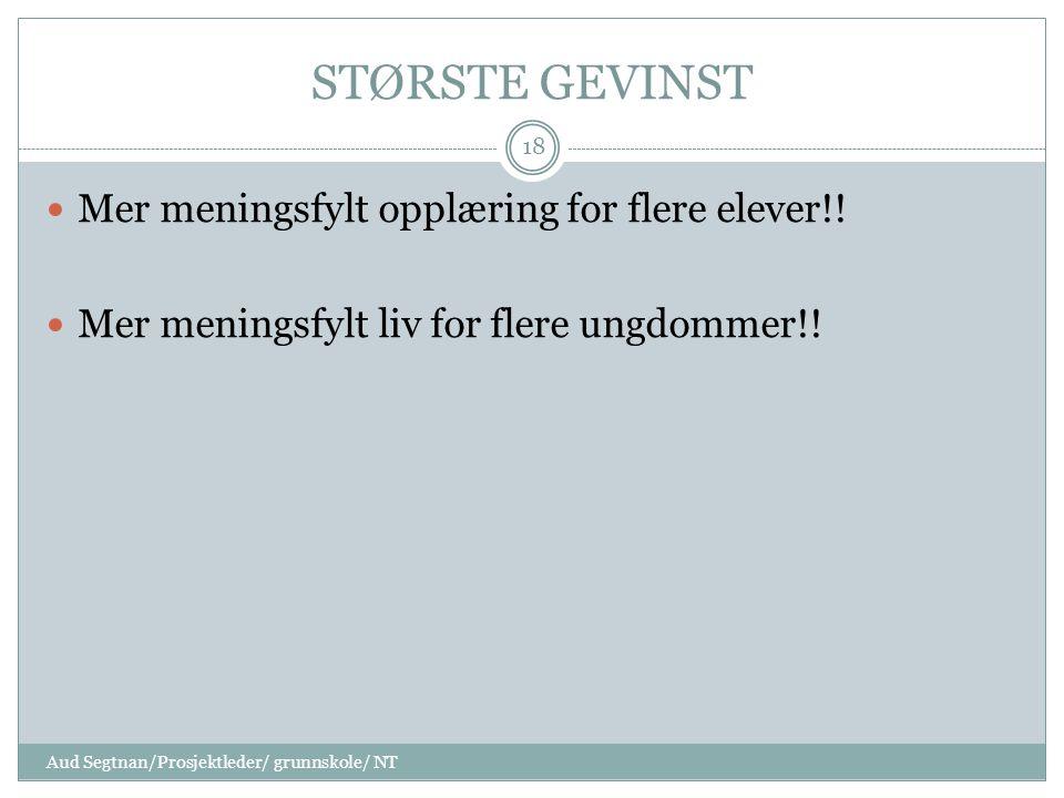 STØRSTE GEVINST Mer meningsfylt opplæring for flere elever!.