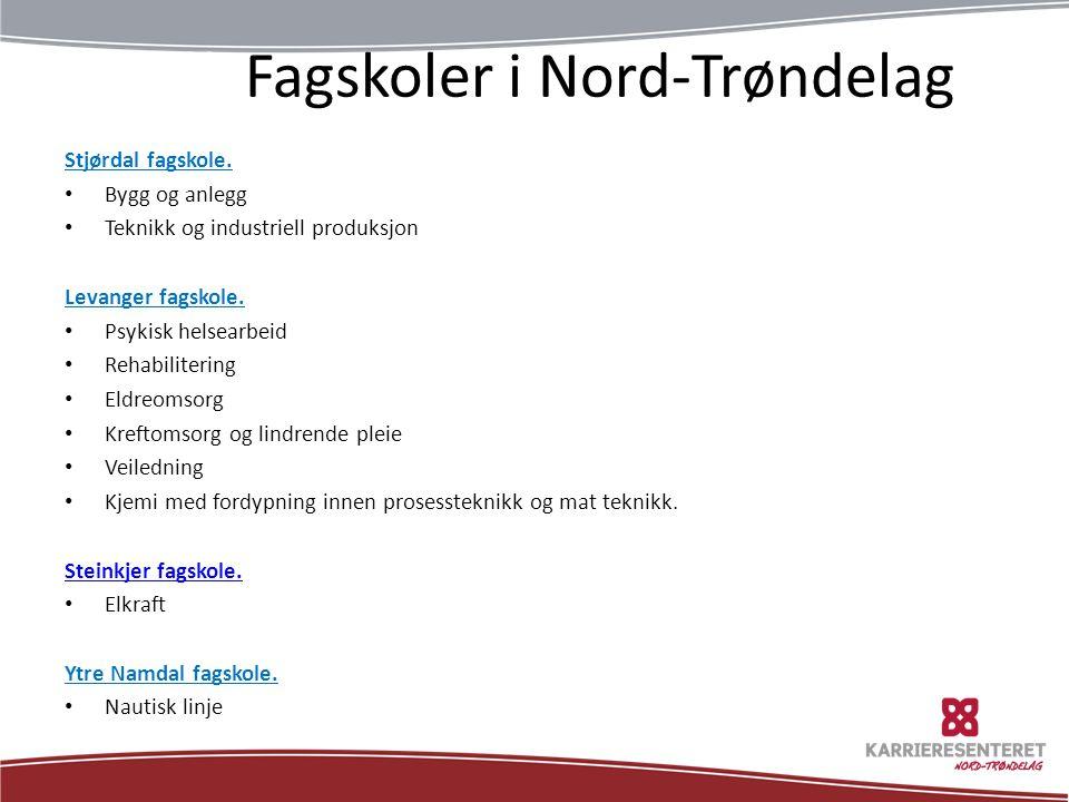 Nyttige lenker utdanning.no studentum.no ikkeforalle.no jobbfeber.no velgriktig.no pedlex.no karrieremagasinet.no www.karriere-nt.no