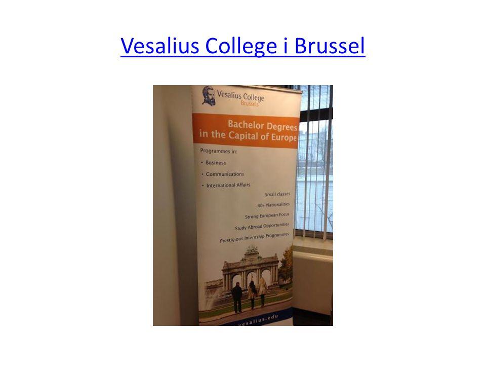 Vesalius College i Brussel