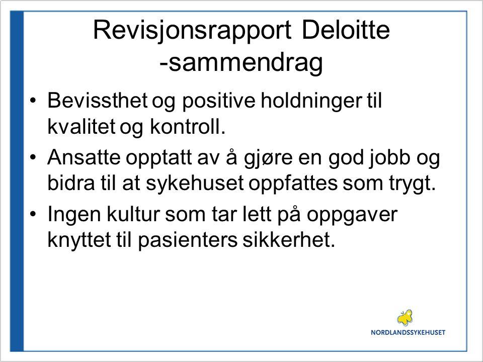 Revisjonsrapport Deloitte -sammendrag Internkontroll- og kvalitetssystem inneholder tildels vesentlige mangler.