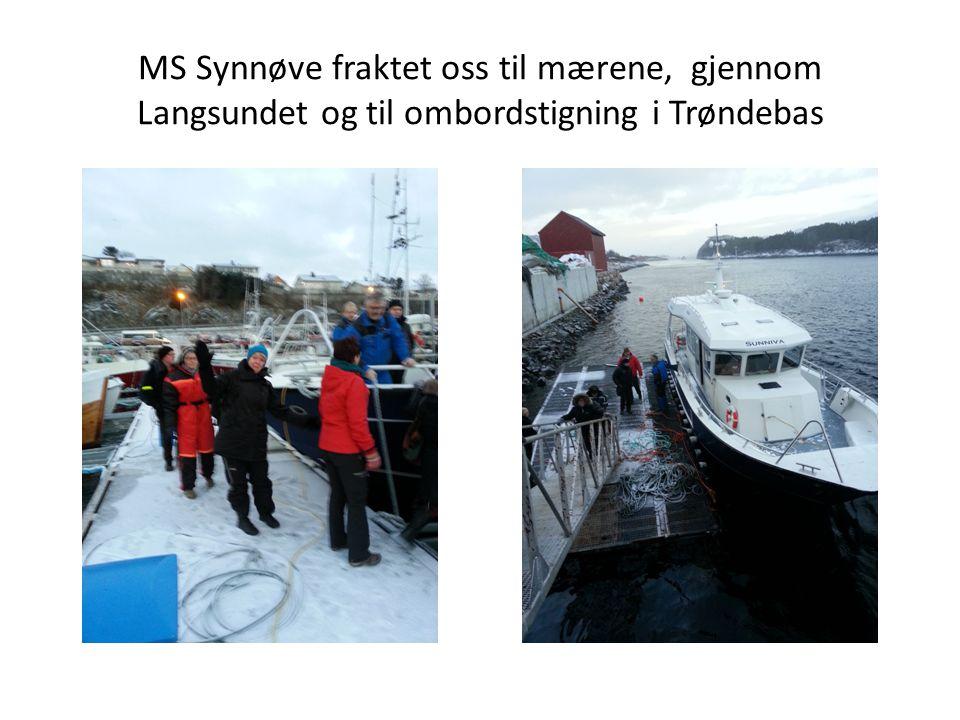 MS Synnøve fraktet oss til mærene, gjennom Langsundet og til ombordstigning i Trøndebas