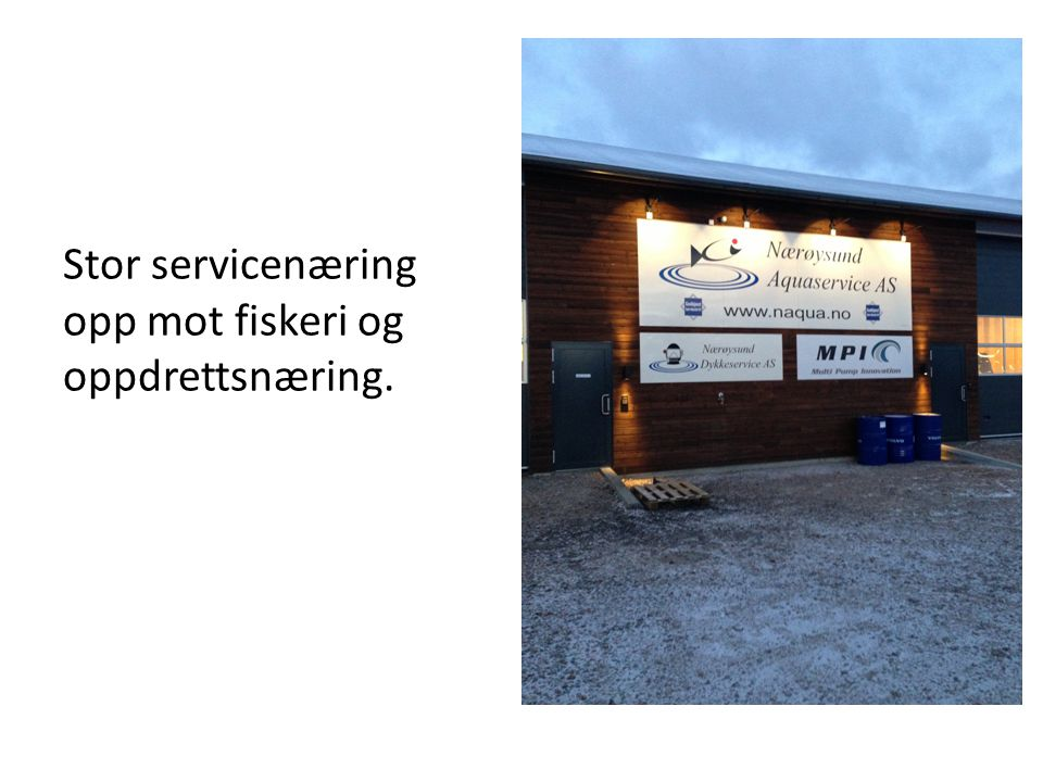 Stor servicenæring opp mot fiskeri og oppdrettsnæring.