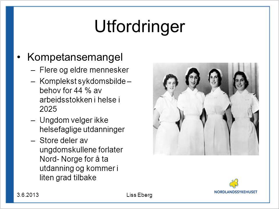 Utfordringer Kompetansemangel –Flere og eldre mennesker –Komplekst sykdomsbilde – behov for 44 % av arbeidsstokken i helse i 2025 –Ungdom velger ikke helsefaglige utdanninger –Store deler av ungdomskullene forlater Nord- Norge for å ta utdanning og kommer i liten grad tilbake 3.6.2013Liss Eberg