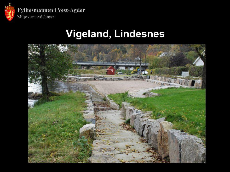 Fylkesmannen i Vest-Agder Miljøvernavdelingen Vigeland, Lindesnes
