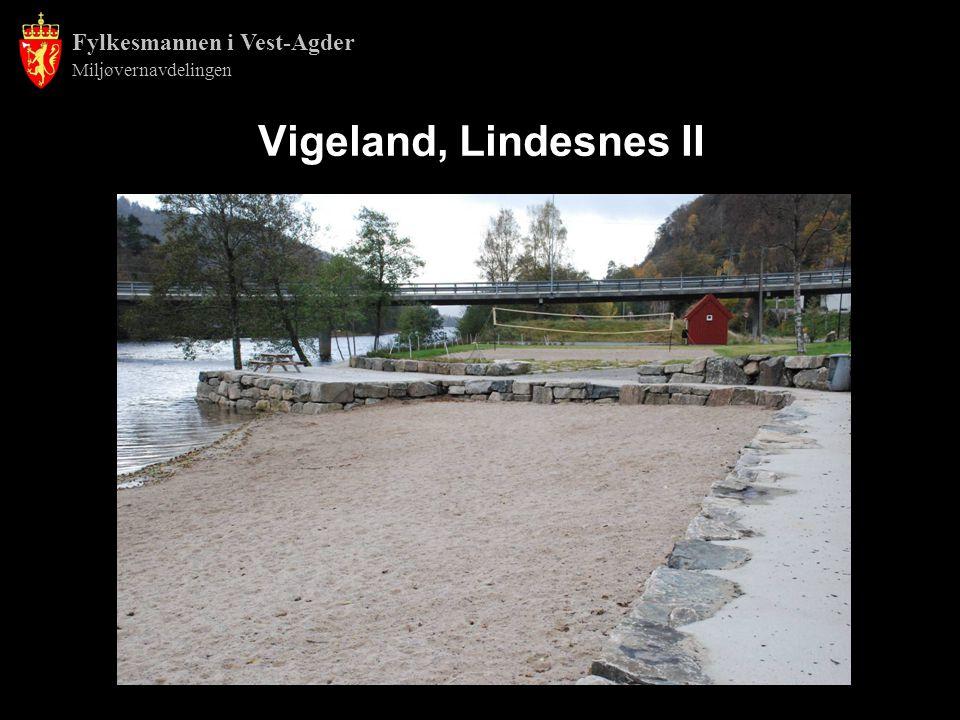 Fylkesmannen i Vest-Agder Miljøvernavdelingen Vigeland, Lindesnes II
