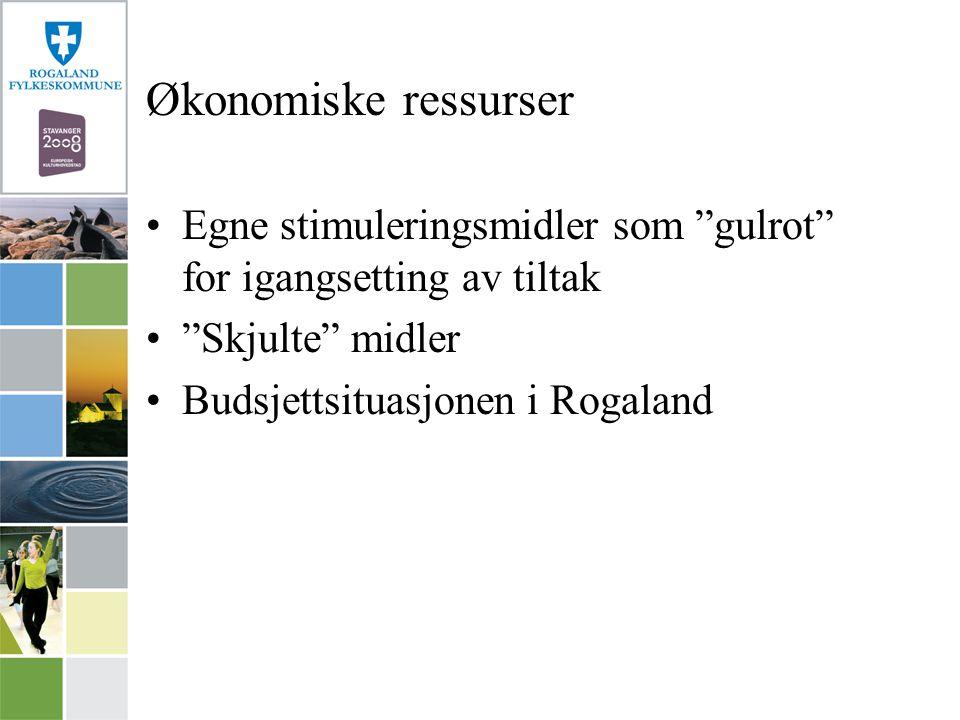 Økonomiske ressurser Egne stimuleringsmidler som gulrot for igangsetting av tiltak Skjulte midler Budsjettsituasjonen i Rogaland