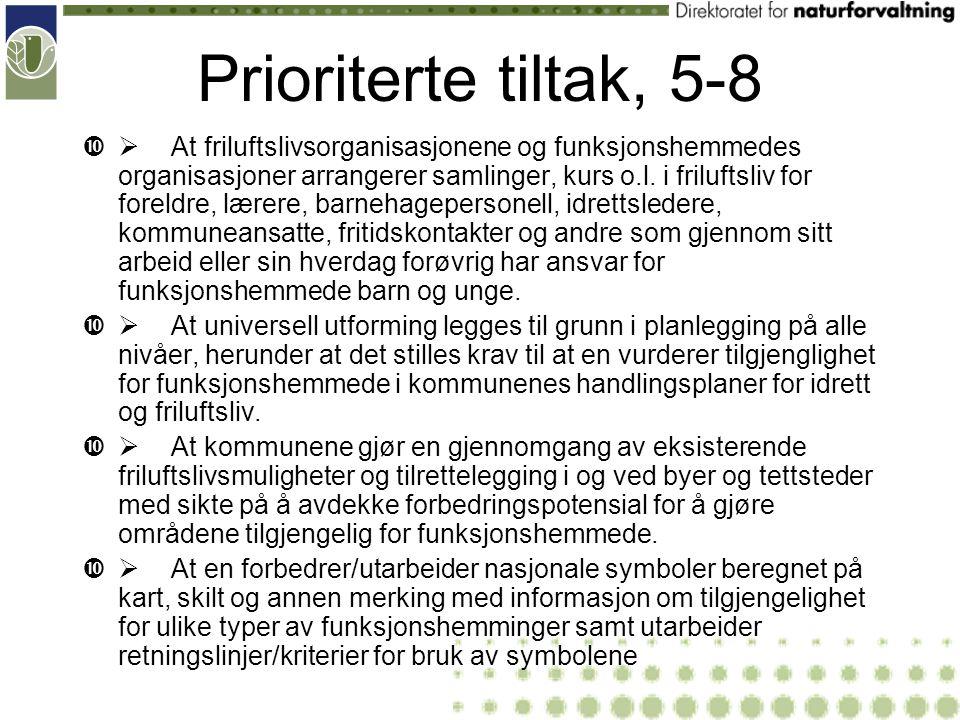 Prioriterte tiltak, 9-12  At en reviderer og forbedrer eksisterende informasjons-, veilednings- og opplæringsmateriell som håndbøker, informasjonstavler, aktivitetshefter, tilgjengelighetsguider m.m.