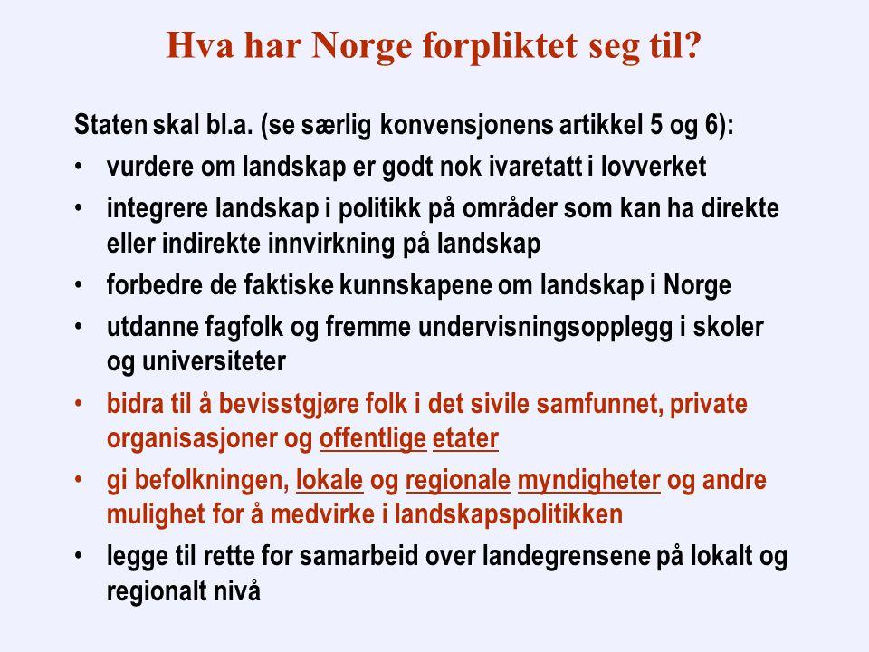 Hva har Norge forpliktet seg til. Staten skal bl.a.