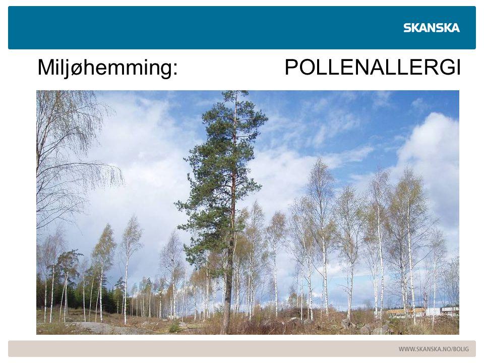 Miljøhemming: POLLENALLERGI