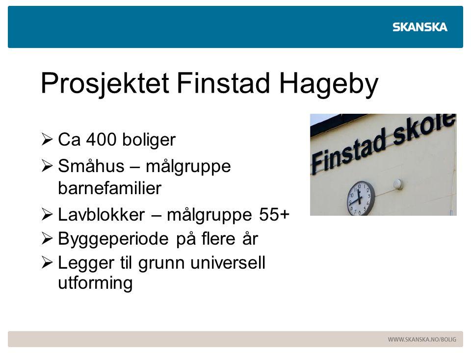 Prosjektet Finstad Hageby  Ca 400 boliger  Småhus – målgruppe barnefamilier  Lavblokker – målgruppe 55+  Byggeperiode på flere år  Legger til gru