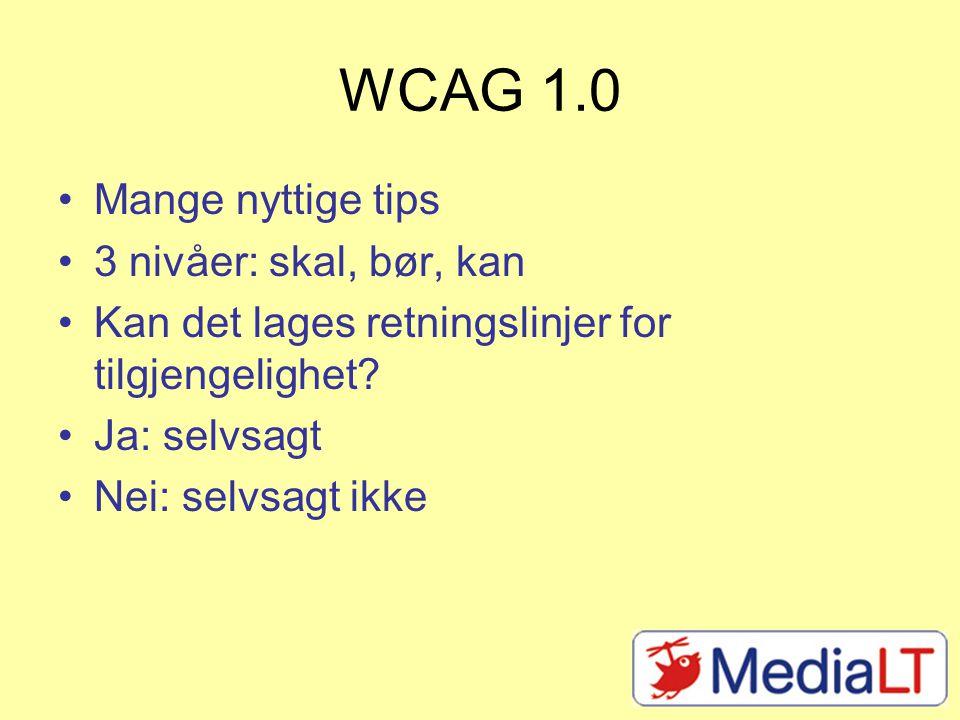 WCAG 1.0 Mange nyttige tips 3 nivåer: skal, bør, kan Kan det lages retningslinjer for tilgjengelighet.