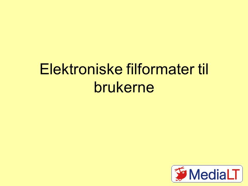 Elektroniske filformater til brukerne