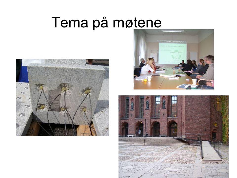 Tema på møtene