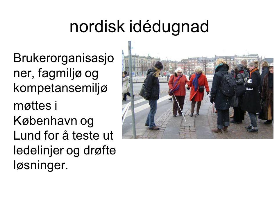 nordisk idédugnad Brukerorganisasjo ner, fagmiljø og kompetansemiljø møttes i København og Lund for å teste ut ledelinjer og drøfte løsninger.