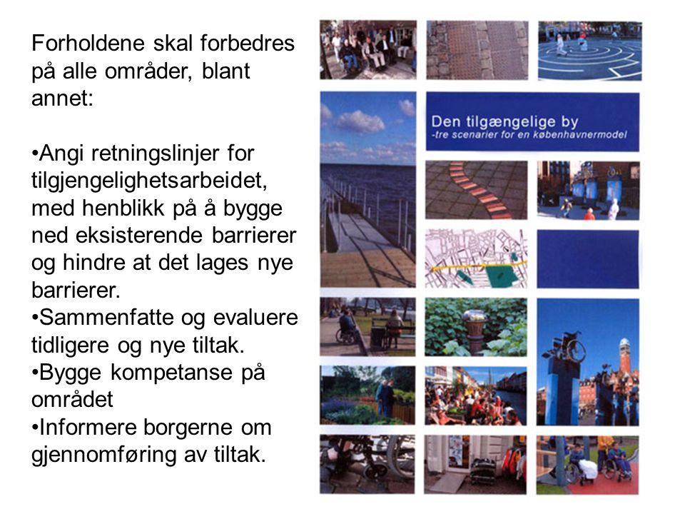 Forholdene skal forbedres på alle områder, blant annet: Angi retningslinjer for tilgjengelighetsarbeidet, med henblikk på å bygge ned eksisterende barrierer og hindre at det lages nye barrierer.