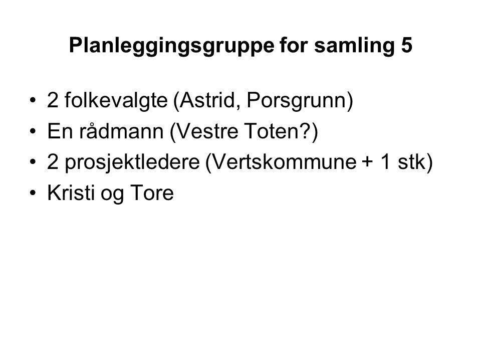 Planleggingsgruppe for samling 5 2 folkevalgte (Astrid, Porsgrunn) En rådmann (Vestre Toten ) 2 prosjektledere (Vertskommune + 1 stk) Kristi og Tore