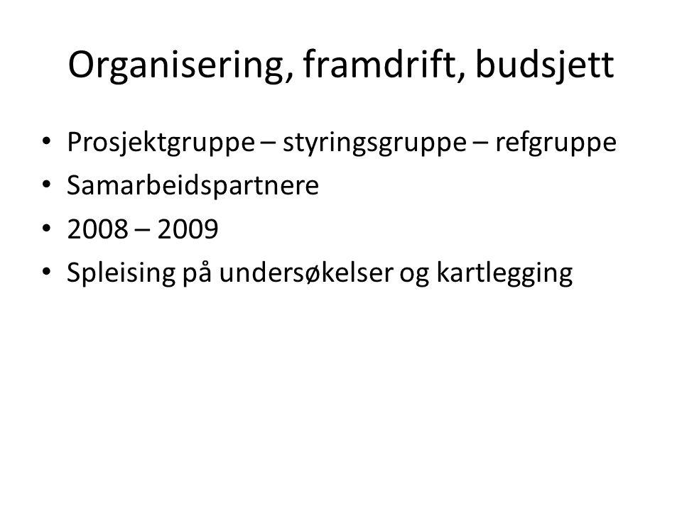 Organisering, framdrift, budsjett Prosjektgruppe – styringsgruppe – refgruppe Samarbeidspartnere 2008 – 2009 Spleising på undersøkelser og kartlegging
