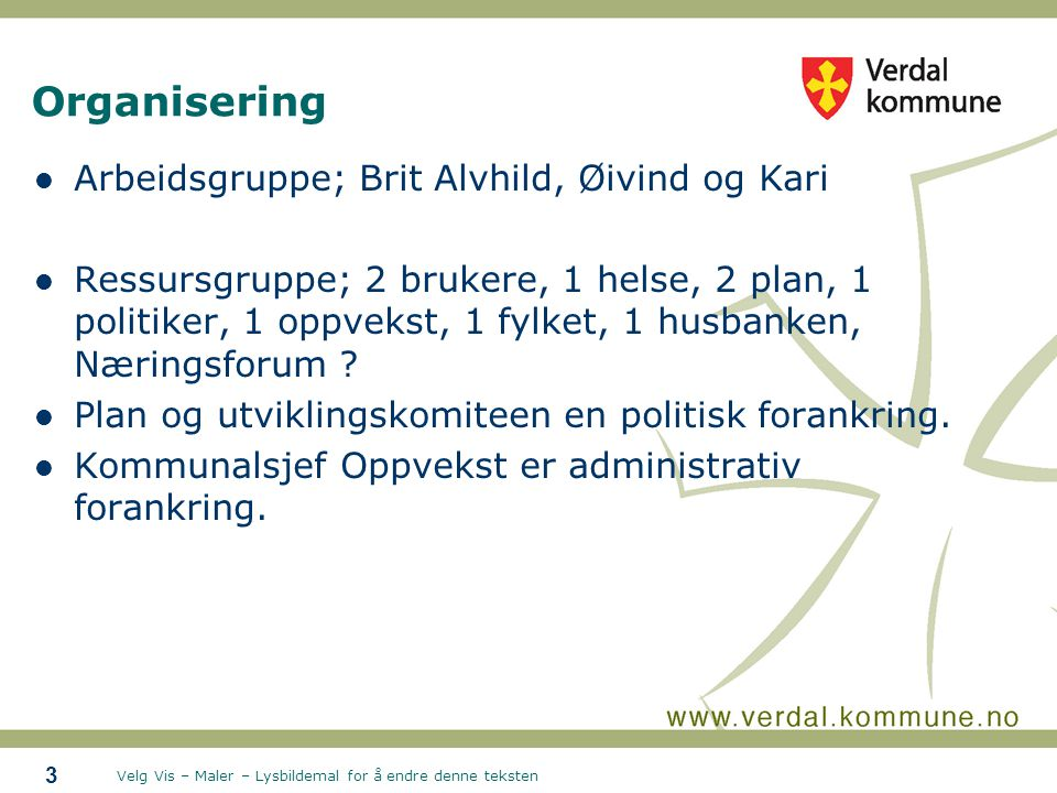 Velg Vis – Maler – Lysbildemal for å endre denne teksten Organisering Arbeidsgruppe; Brit Alvhild, Øivind og Kari Ressursgruppe; 2 brukere, 1 helse, 2
